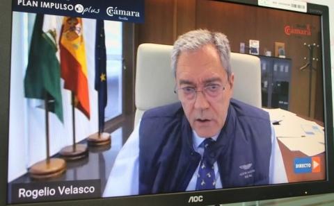 Webinar Rogelio Delgado Fundación Cámara